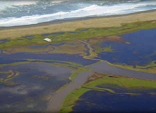 Eel River Estuary and Centerville Slough Enhancement Project, CA (2017)