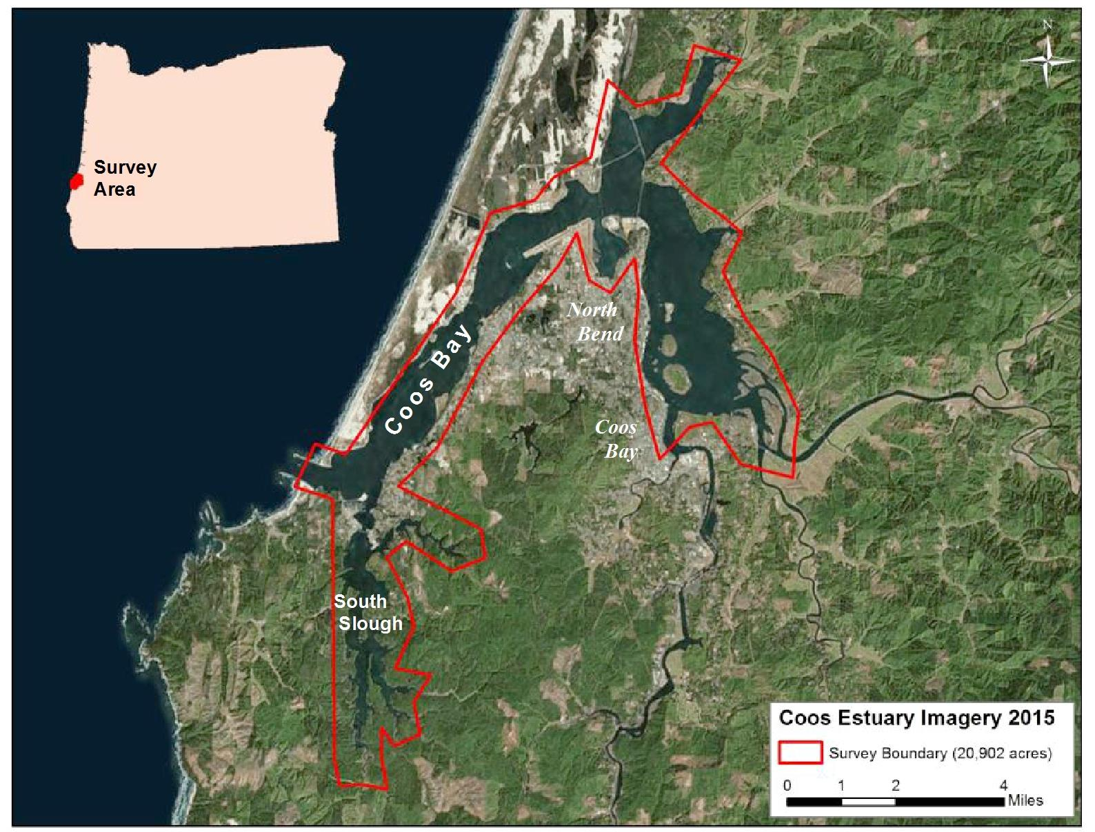Eelgrass mapping of the Coos Estuary, Coos Bay, OR (2016)