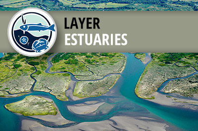 West Coast USA Current and Historical Estuary Extent
