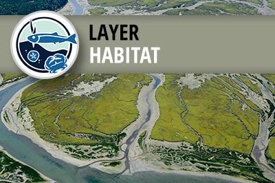West Coast USA Estuarine Biotic Habitat