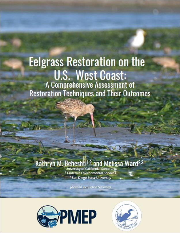 Eelgrass Restoration Synthesis on the U.S. West Coast (2021)